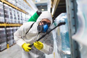 Para que realizar o controle de pragas nas empresas?